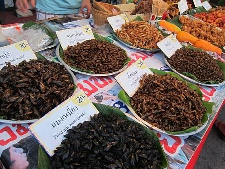 insecte la piata