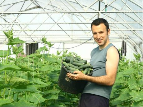 Cum face agricultură un român de 26 de ani care a învăţat în SUA: 10.000 de euro profit de pe 5 hectare
