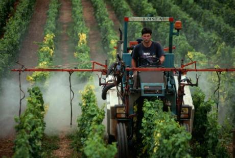 Les-pesticides-ont-bien-des-effets-nefastes-sur-la-sante_article_popin