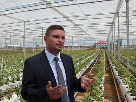 O seră de trandafiri a fost inaugurată în Dâmbovița: 40.000 de rădăcini și o floare unică în lume