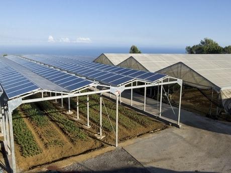 Serele fotovoltaice, soluția viitorului pentru recolte bio mai ieftine