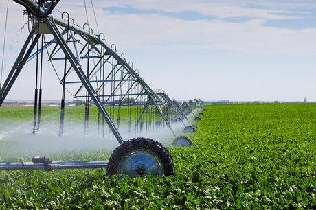 1irrigation