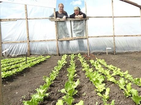 Cum a ajuns o americancă să cultive ardei mexicani peste Prut