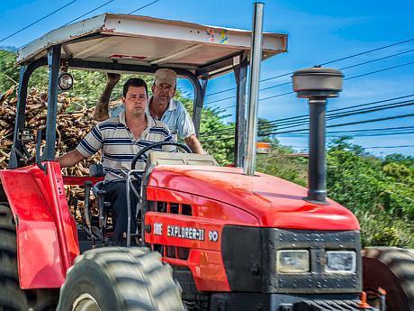 ingineri agronomi