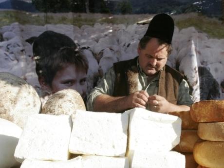 TARGUL AGRICOL DE TOAMNA - Piata Constitutiei
