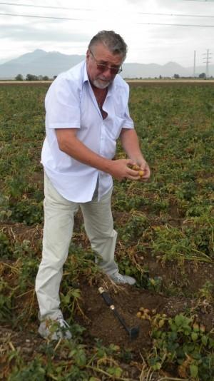 Ioan_Benea_-_pres_Asociatia_Cultivatorilor_de_Cartofi