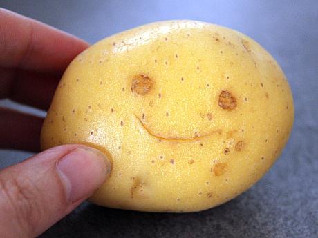 Happy-potato-Jude-Doyland