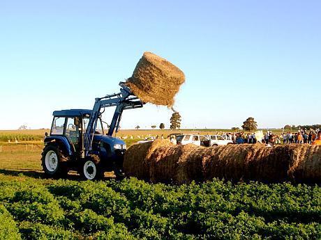 cel mai ieftin tractor mic Foton Europard FT 254