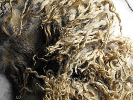 lana de oaie Racka
