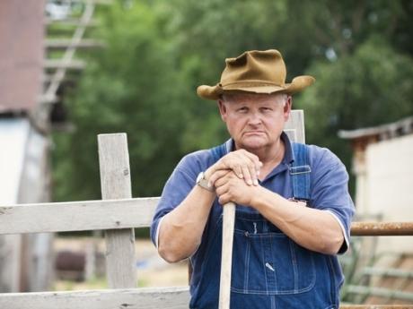 plata impozitului pe bemnit agricol