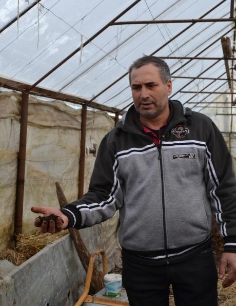 Zaharia Dumitru legumicultor Vidra