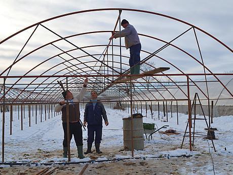 constructie solarii