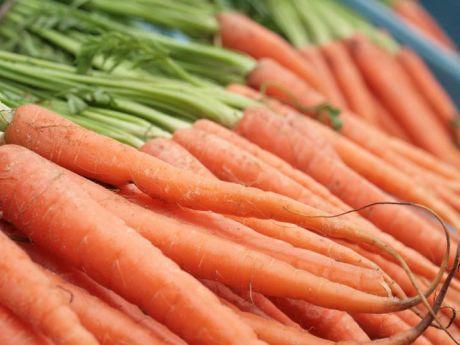 cultura morcovului