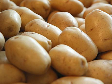 cultura cartof adora romania