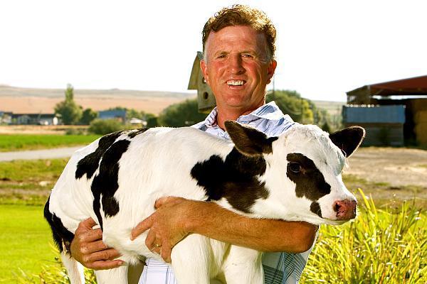 ajutor de minimis cresterea bovinelor