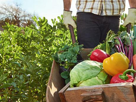 concersia la agricultura bio