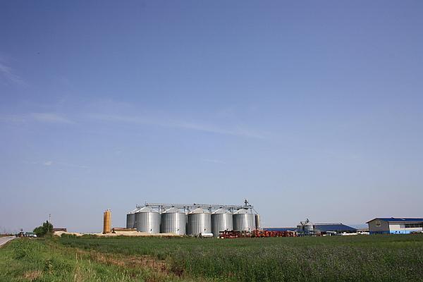 mare ferma agricola judetul Timis