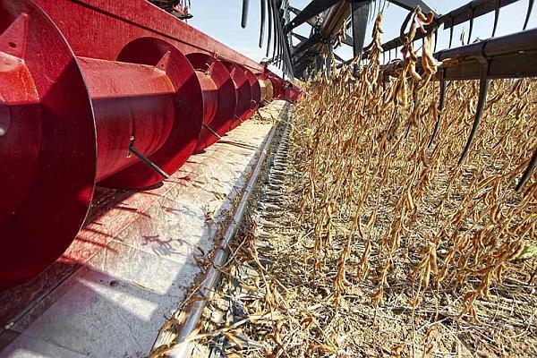 header pentru recoltat soia