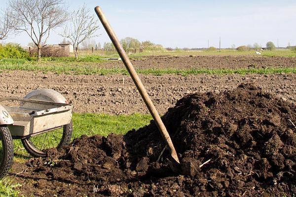 natural-fertilizer