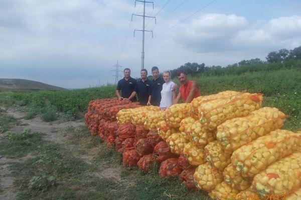 cultivatori de ardei