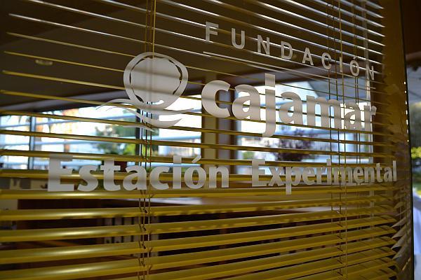 Fundatia Cajamar