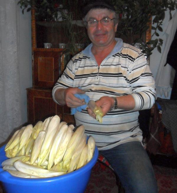 cultivator de andive din judetul Neamt