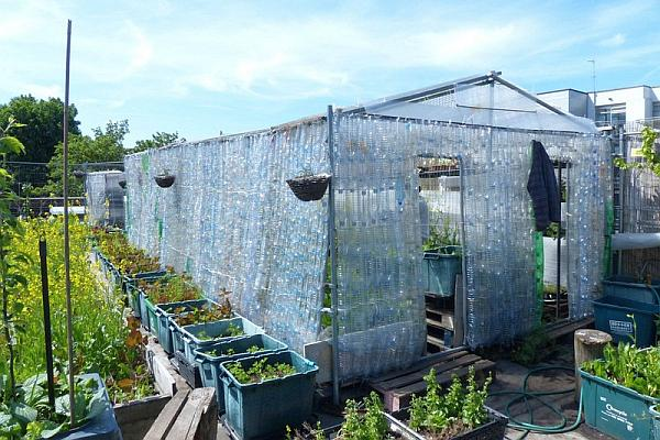 Repurposed_Plastic_Bottle_Greenhouses10