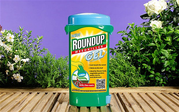 Round-up-main_2197816b