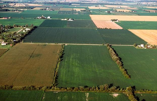 Aerial view of farmland, Canada