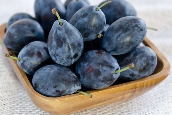 prune-vinete
