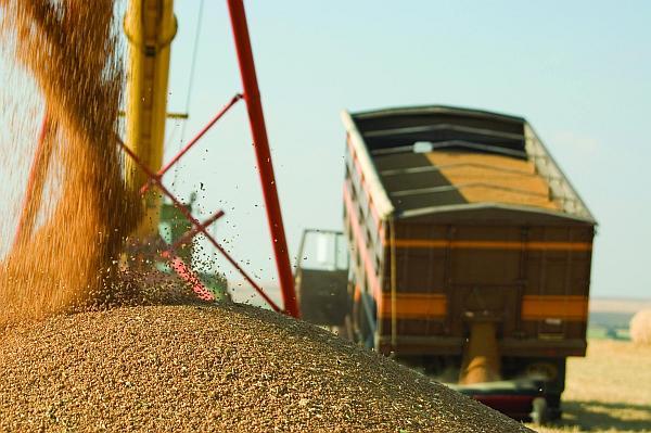 grain_truck