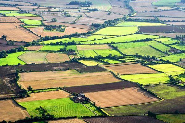 teren-agricol-teledetectie