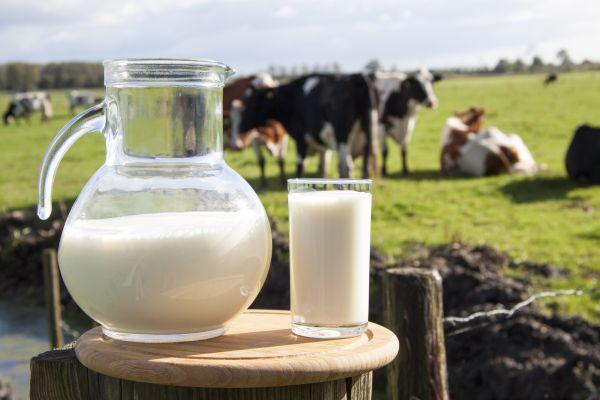 cana si pahar de lapte