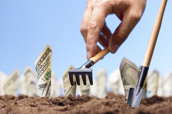 American dollars grow from the ground - carrying the investments