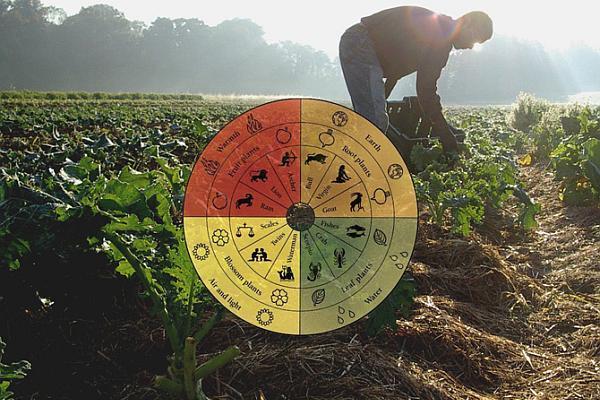agricultura biodinamica ilustratie