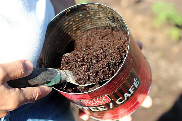 Zațul de cafea – o soluție pentru grădina ta. Iată la ce îl poți folosi!