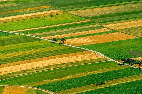 teren agricol in Franta