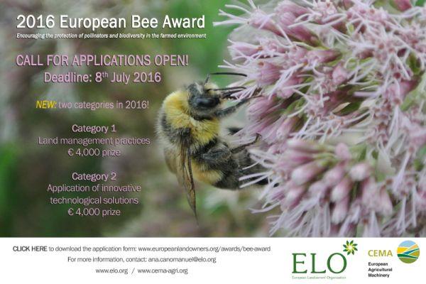 bee-award