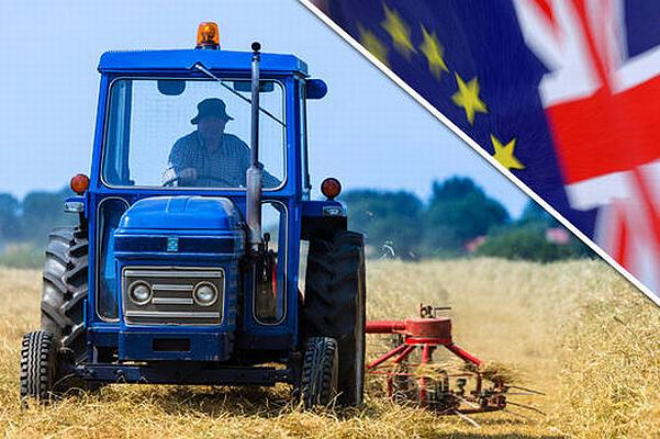 cum au votat fermierii la brexit