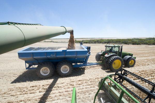 Prețul grîului -  diferența de la bursă la ce oferă traderii în 2016