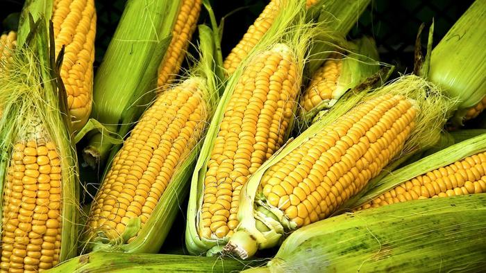 corn-starch-vegetable_eb6be91f7a4ed7ab