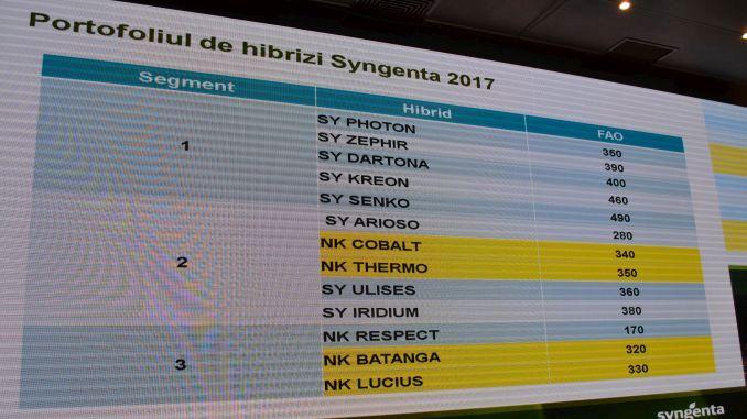 hibrizi-de-porumb-syngenta