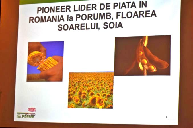 Pioneer lider de piata porumb floarea soarelui soia