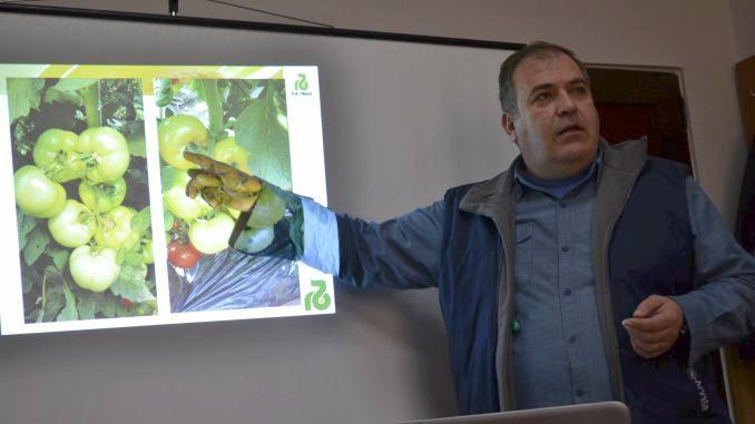 sfaturi Holland Farming pentru rasaduri