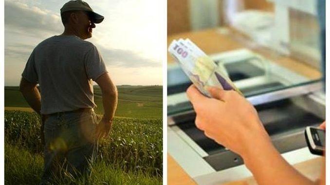 Bani APIA fermieri banca cont