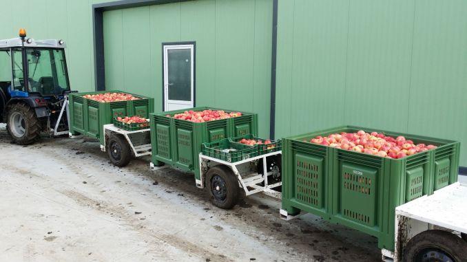 Transportul fructelor in boxpaleti
