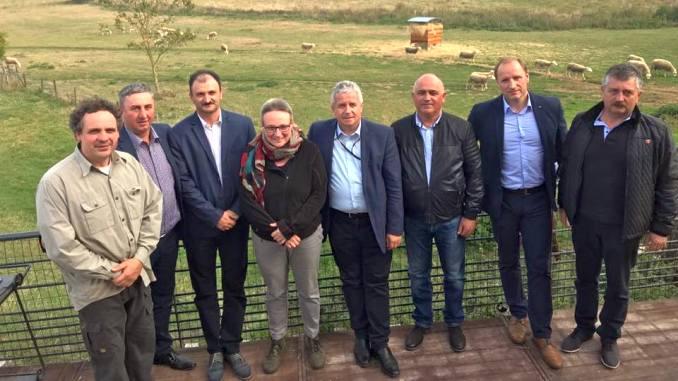 Vzita in ferma de ovine Belgia