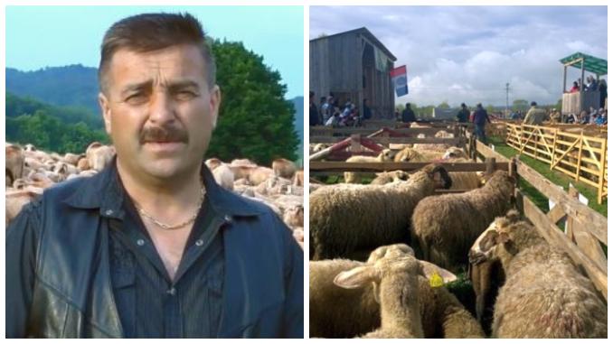 Dan Petrescu despre afacerile cu scrapie la ovine