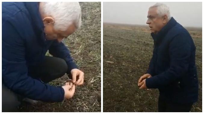 Ministerul Petre Daea la graul rasarit