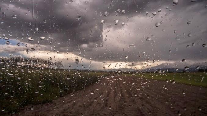 Ploi noiembrie